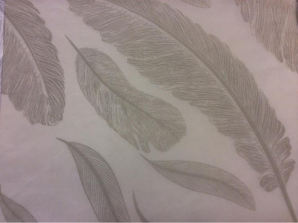 Купить тонкий тюль с перьями в Москве 2521/29. Италия, Европа, тюль для штор. На прозрачном фоне угадываемый рисунок ( перья) зеленовато - серого оттенка