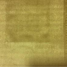 Дорогой однотонный бархат в стиле ампир, барокко, классика 2419/92. Италия, каталог, портьерная ткань для штор. Цвет золото с горчицей